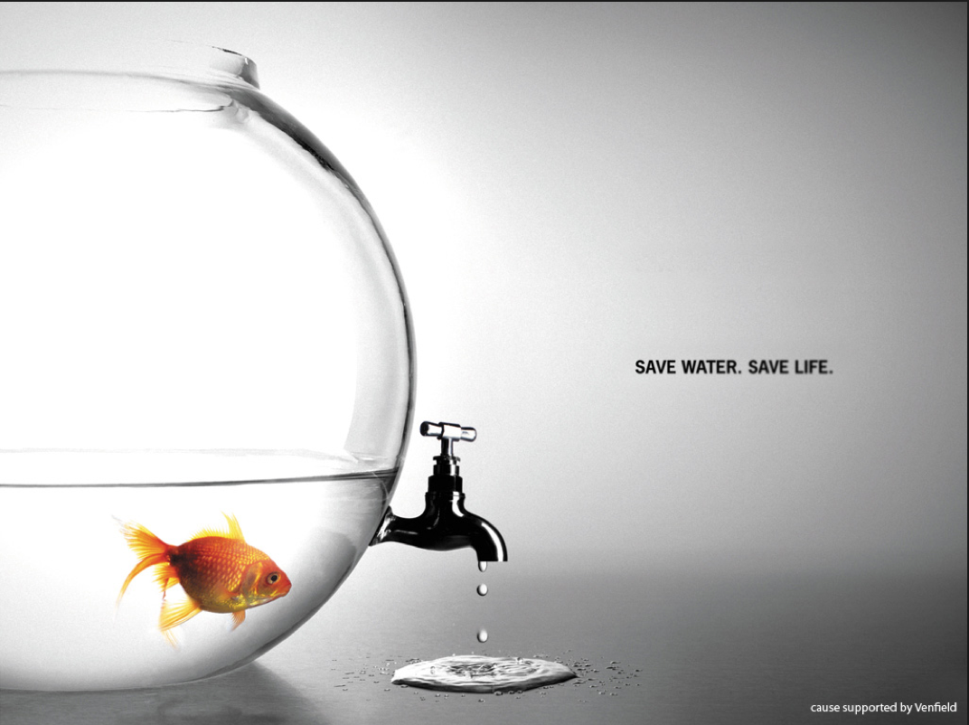 生命的价值,值多少?
